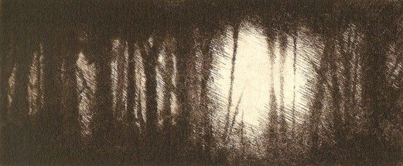 Filtered II - Drypoint